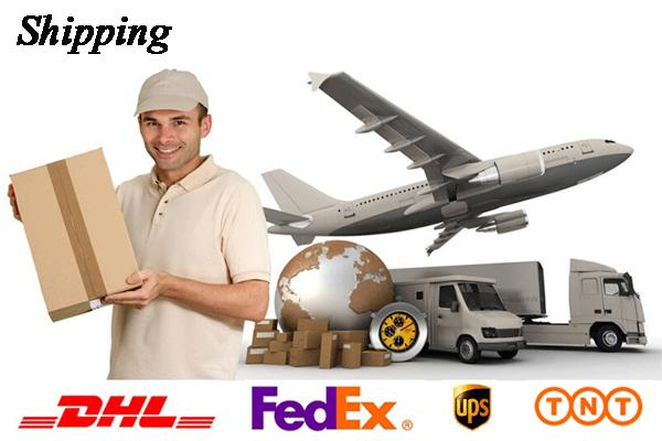 6.Shipping
